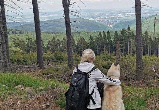tytulowa_pies